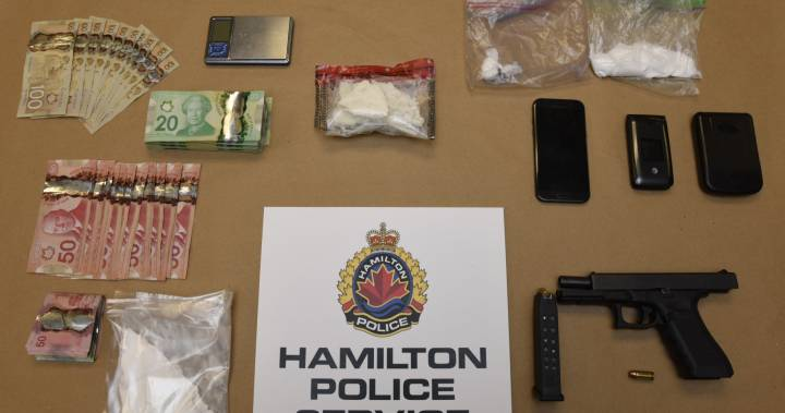 Hamilton police use taser on alleged drug trafficker in East Mountain chase - Hamilton